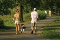 Increase unstructured physical activity to control weight gain